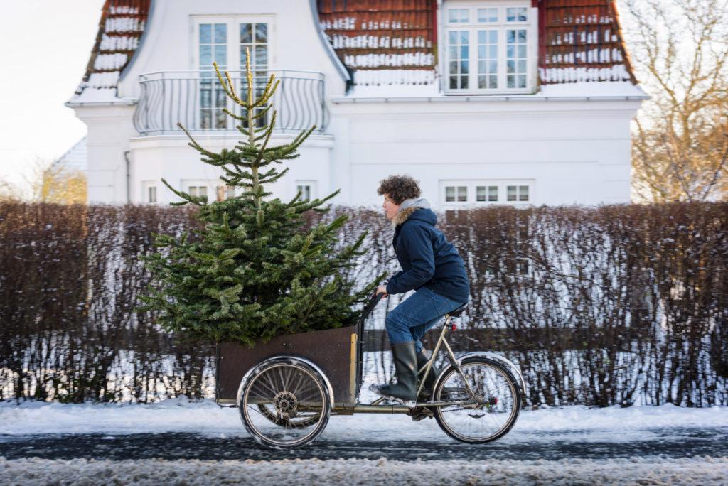 Juletre på sykkel