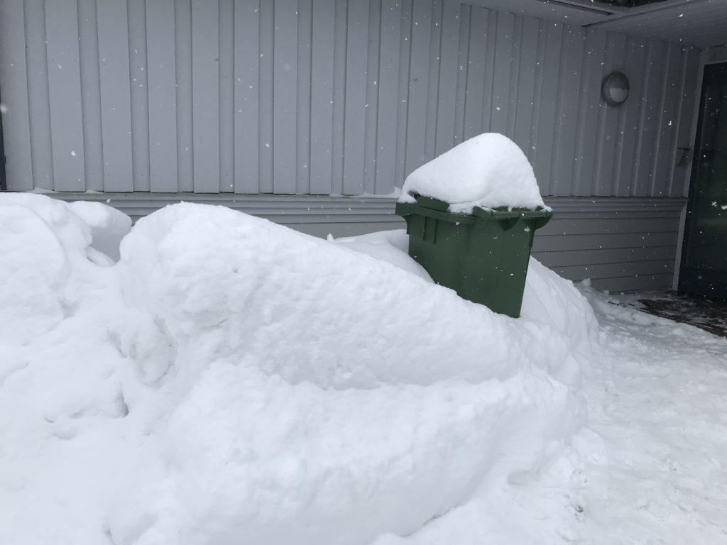 snø dekker til